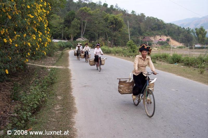 Women on the way to the market
