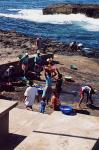 Fishdelivery (Santo Antao)